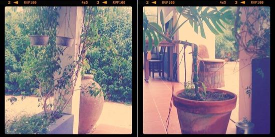 entorno2_casa_da_dina