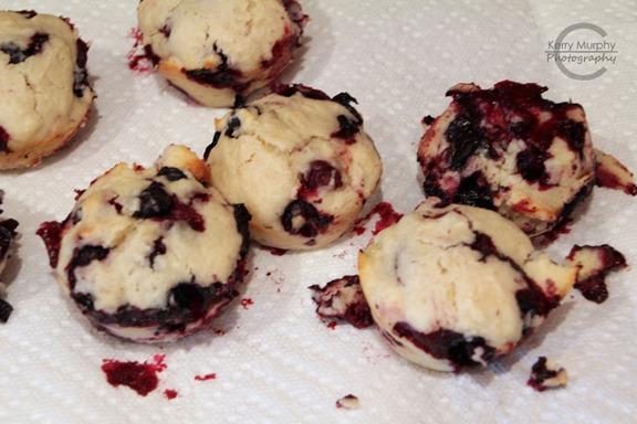 Fail-Muffins-03