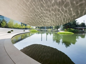 diseño-arquitectura-organica