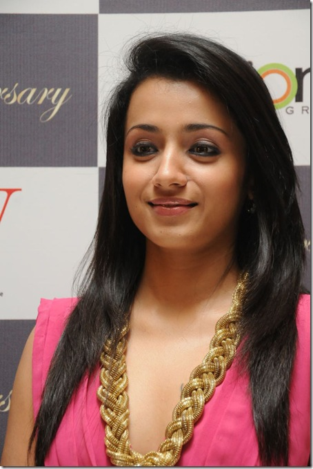 trisha-hot-images-2013