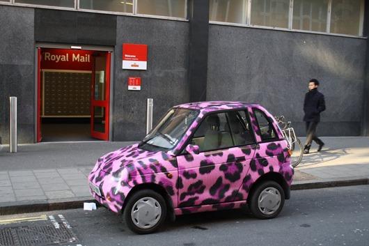 LeopardCar