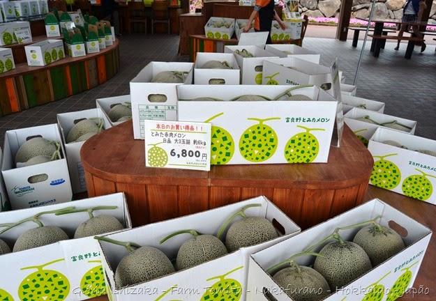 Glória Ishizaka - Farm Tomita 111