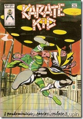 P00004 - Karate Kid v1 #4