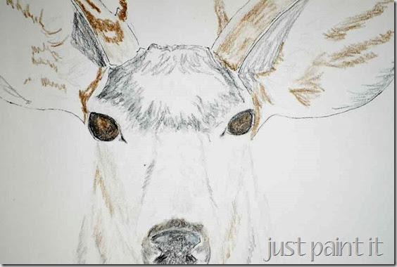 Deerhead-Sketch-B