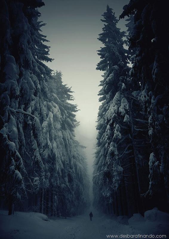 paisagens-de-inverno-winter-landscapes-desbaratinando (1)