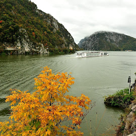 Passenger ,,Viking E ,,  On Danube Canyons ,In Fall. by Adrian Per - Transportation Boats