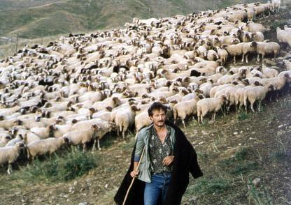 ΟΠΕΚΕΠΕ: Υποβολή on line της αίτησης επιδότησης από το Γραφείο Αγροκτηνοτρόφων