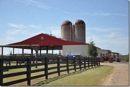 southern belle farm 100611 (4)