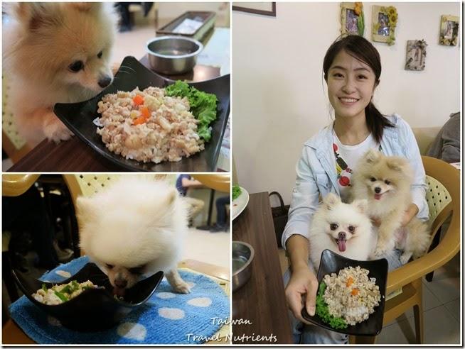 高雄Mona's Cafe, Mona House寵物友善餐廳,民宿 (71)
