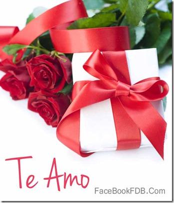 postales flores (2)