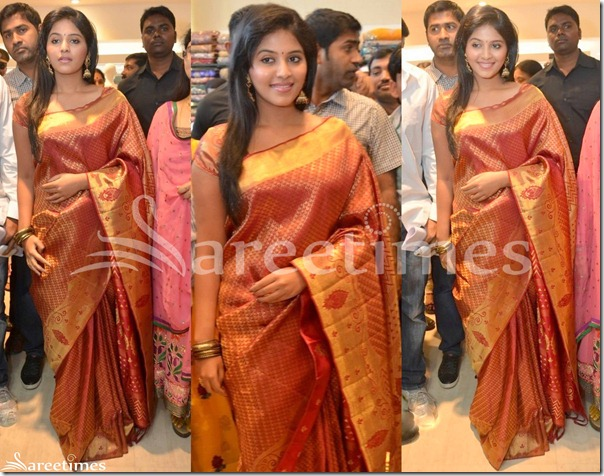 Anjali_Traditional_Silk_Saree