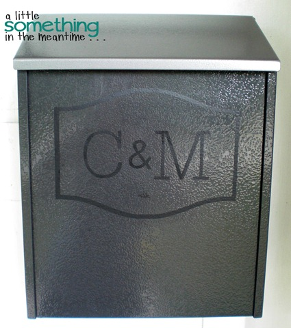 Vinyl Mailbox Makeover WM