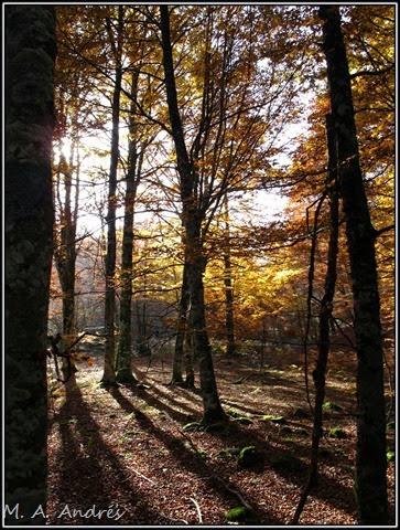 Lantz otoño 099