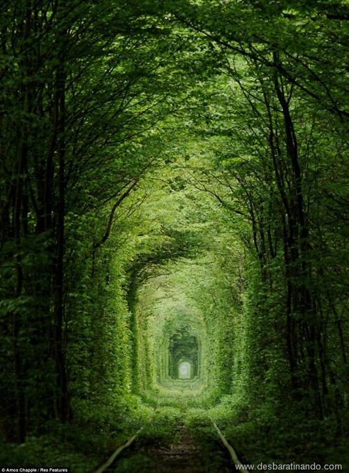 tunel do amor ucrania desbaratinando  (2)