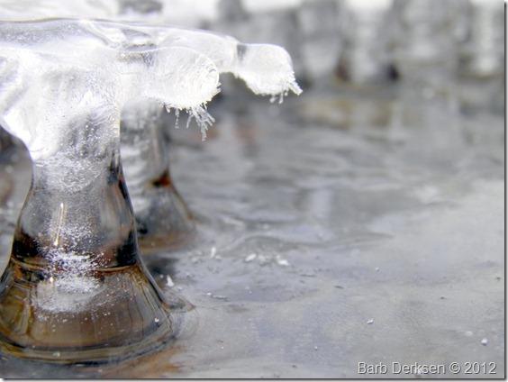 Barb Derksen Ice 2012  (16)