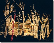 Christmas-Lights-Show-8