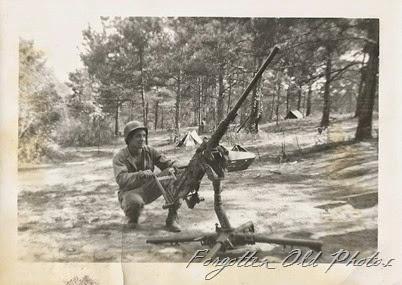 Snapshot  Gun Pequot Lakes ant