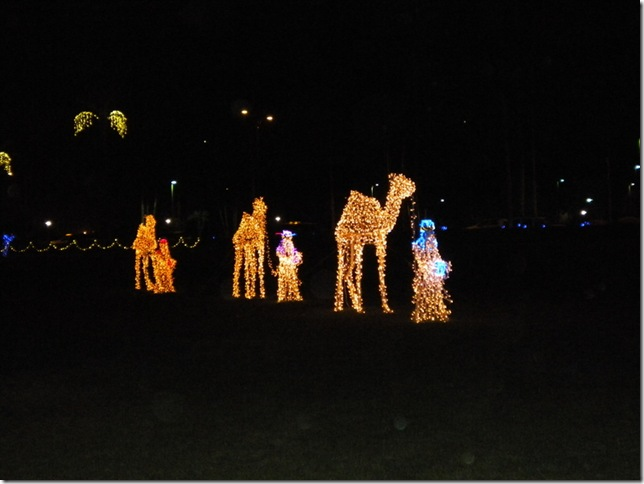 12-13-12 B Mormon Lights in Mesa 023