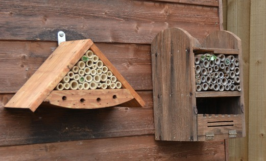 Leaf-cutter bee homes