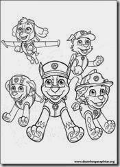 patrulha_canina_nick_desenhos_pintar_imprimir09