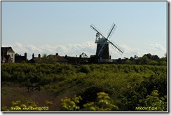 Cley Marshes D2h  12-05-2012 15-12-02