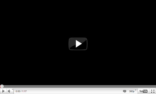 The embeded video image