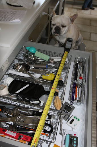 Franny, gadget drawers always seem to be messy.  I wonder what the stylists have planned for here.