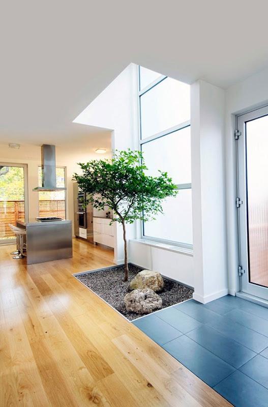 Cómo hacer crecer un árbol adentro?