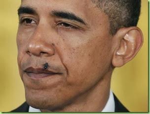 obama-fly