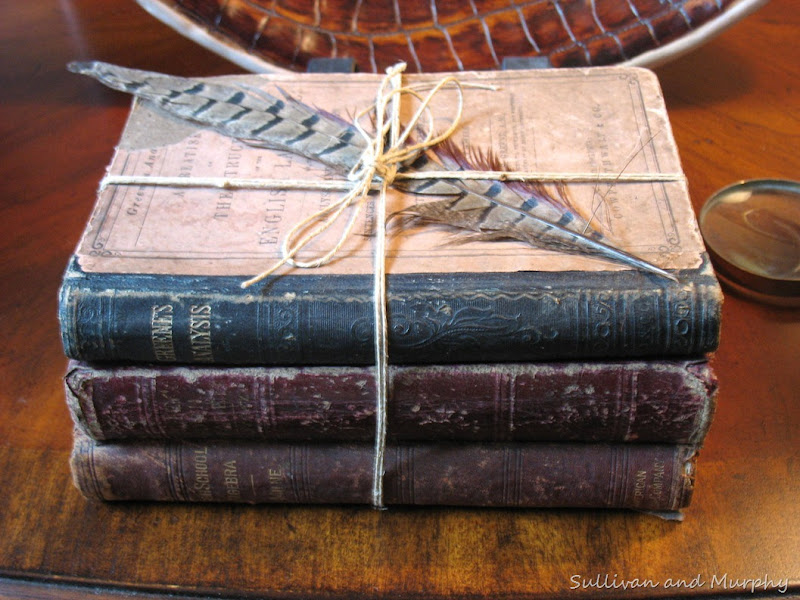 old books,feather