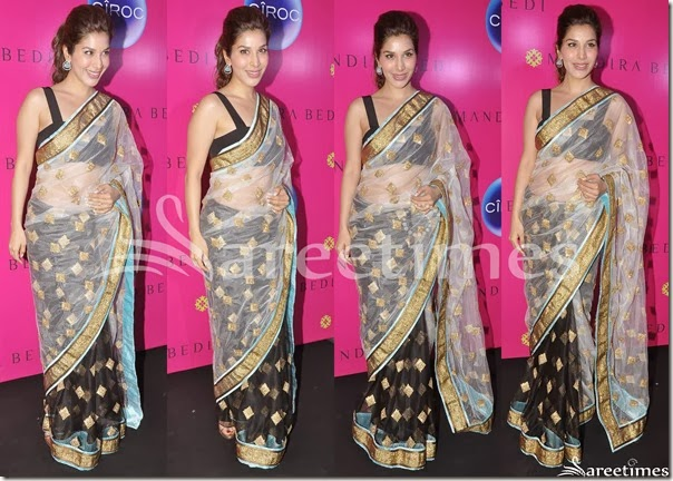 Sophie_Chaudharu_Half_and_Half_Saree