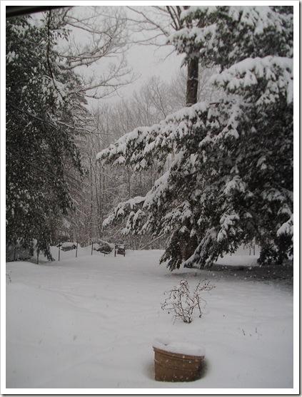 snowstorm 2.11 017