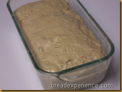 sprouted-wheat-bread 028