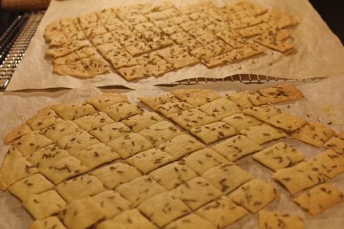 sourdough-semolina-fennel-seed-crackers_15