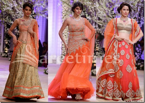 Jyotsna_Tiwari_Sarees_Bridal_Fashion_Week(2)