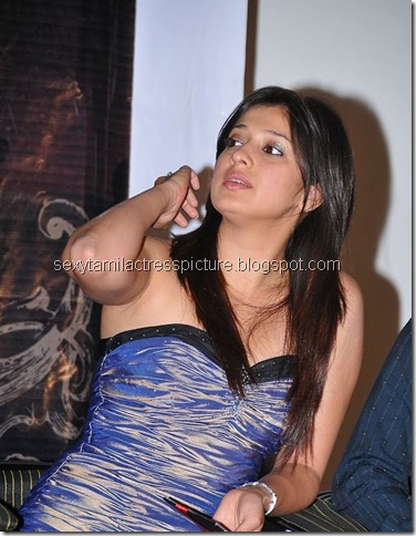 lakshmi_rai_too_hot_stills_collection_11