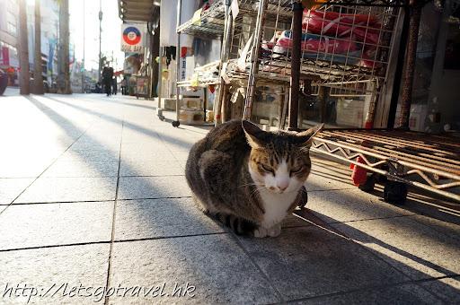 20111227okinawa069.JPG