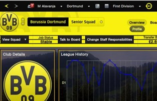 FM 2013 Skin