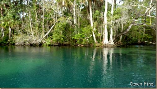 Chassahowitza River canoeing_246