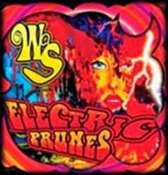 ElectricPrunesWAS