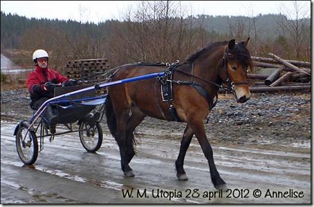 2012-28april-pia_01