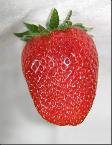 Strawberry Mmmmm