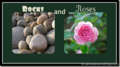 Rocks and Roses