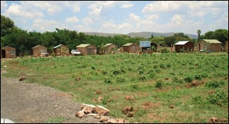 DASPOORT WENDY HOUSES FACE THE CHOP. FROM BLACK RACISTS