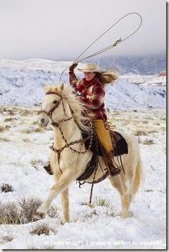 1domar caballo cowboys (7)
