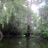 Two OClock Bayou Paddle July 14, 2012 - IMG_0052.JPG