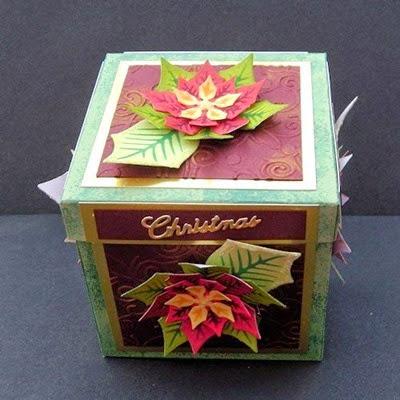 PoinsettiaBox25