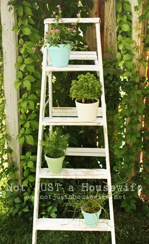 ladder-plant-stand