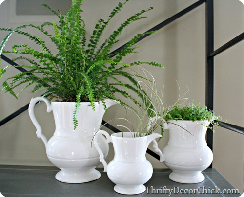 Simple decorating at @thriftydecorchick -- plants in pitchers