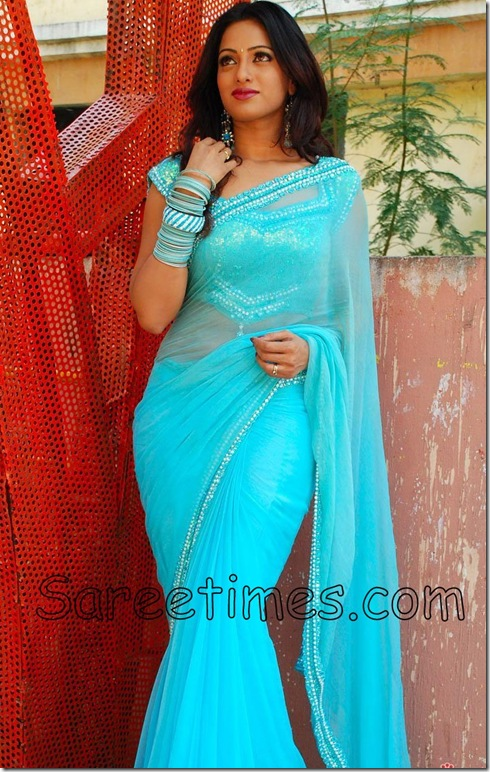 Udaya_Bhanu_Blue_Saree